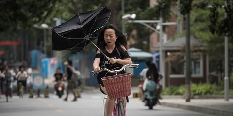 Wind Blowing Bicyclist