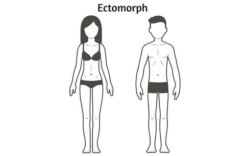 An ectomorph illustration.