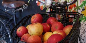 apples in bicycle basket