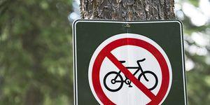 Illegal Mountain Bike Trail