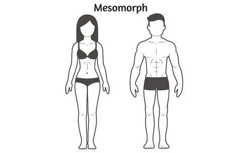 A mesomorph illustration.