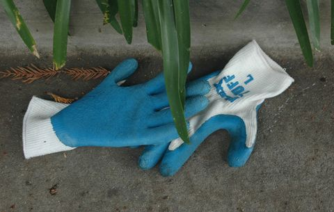 pair of gardening gloves