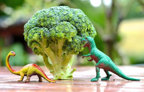 dinosaurs near broccoli