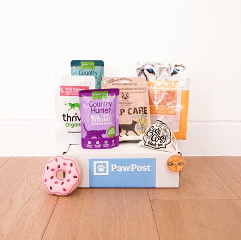10 of the best dog subscription boxes to buy now