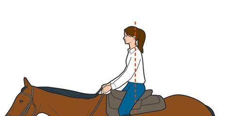 Horse Backriding