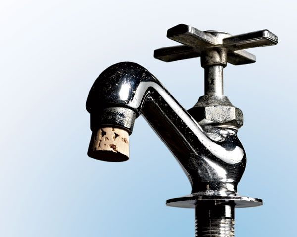 What\'s in Your Tap Water?