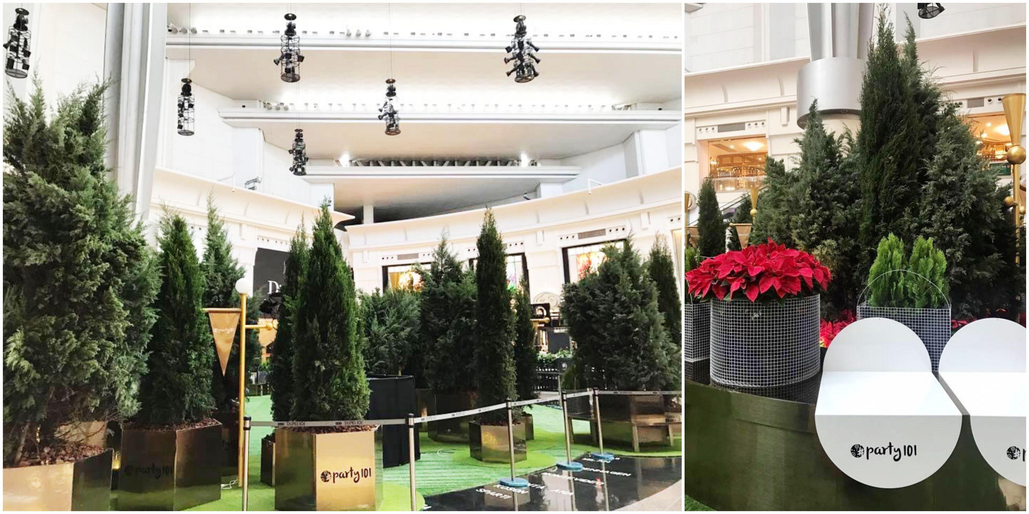 聖誕樹,柏樹,森林,101,主題派對,電音,跨年,信義區聖誕裝置