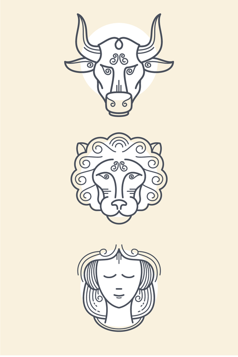 Face, Line art, White, Horn, Head, Bovine, Nose, Drawing, Line, Illustration,