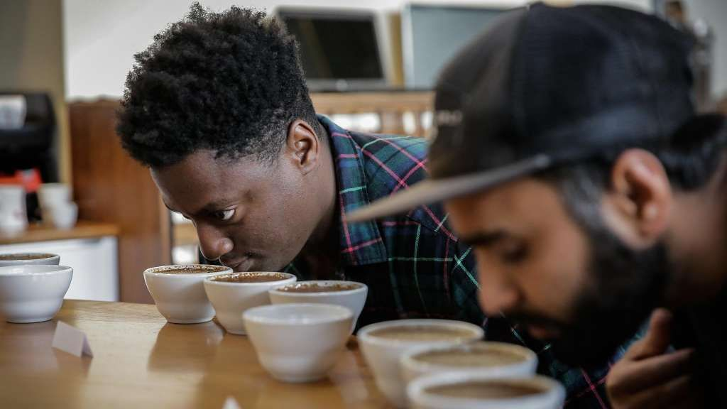 Marijuana coffee product Somatik featuring Ritual debuts