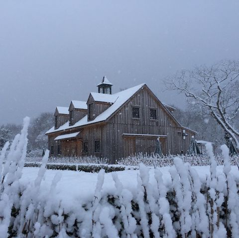 Snow, Winter, Freezing, Sky, Home, House, Atmospheric phenomenon, Tree, Frost, Rural area,