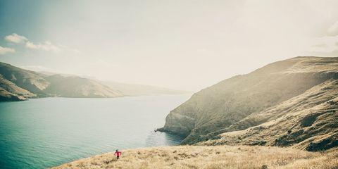 Rave Run: Godley Head, New Zealand