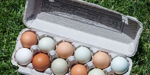 kinds of eggs nutritional difference
