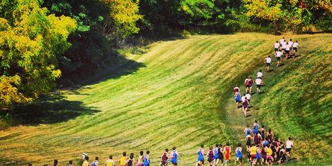 Endurance sports, Crowd, Grassland, Slope, Groundcover, Garden, Park, Trail, Running, Cross country running,