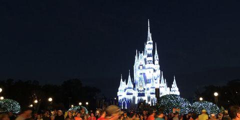 Runners at Walt Disney World