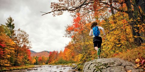 Deciduous, Leaf, Tree, Rock, Autumn, Stream, People in nature, Orange, Watercourse, Riparian zone,