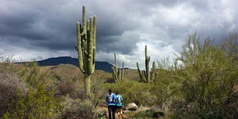 Spur Cross Ranch Trails