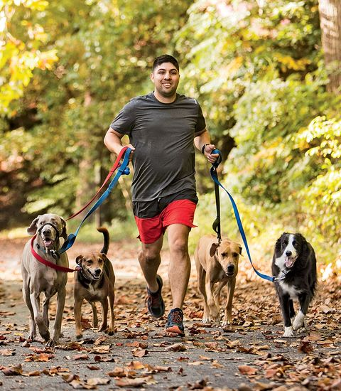 running with dogs as a full time job runner s world