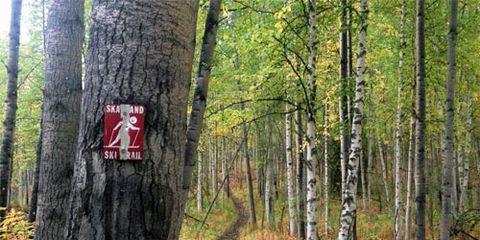 media: Equinox Marathon Trail