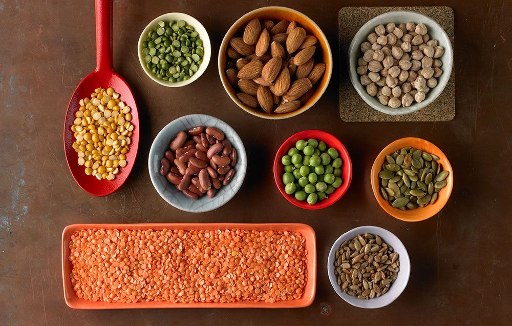 The 20 Highest Protein Foods Vegetarian Runners Can Eat