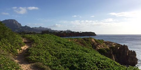 Lisa Jhung's oceanside trail