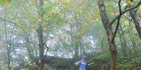 Media: Savoy Mountain State Forest, Savoy, Massachusetts