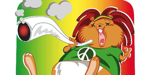 Stoner Hamster Smoking a Joint