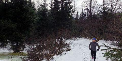 Snowy trail in Alaska