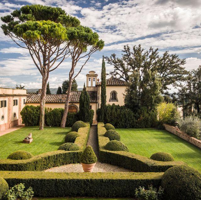 plant, window, shrub, garden, hedge, woody plant, park, lawn, landscaping, yard,