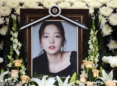 Head, Picture frame, Flower, Spring, Smile, Organ, Eye, Plant, Petal, Photomontage,