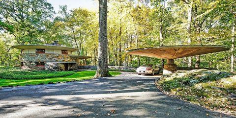 Natural landscape, Tree, Table, Property, Leaf, Nature reserve, Furniture, Botany, State park, Grass,
