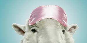 1103-counting-sheep.jpg