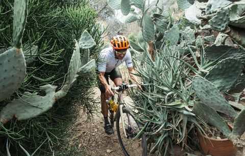 cyclist riding through cactus