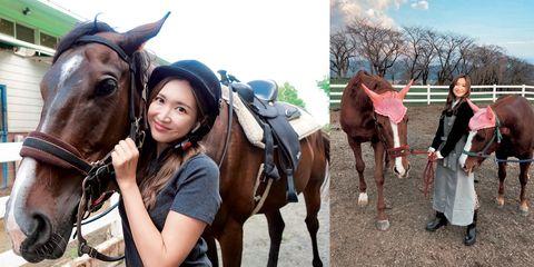 馬と触れ合う紗栄子