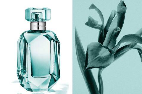 tiffanyandco,tiffany,tiffany藍,同名晶鑽淡香精,鳶尾花,香水香氛,淡香精,perfume,beauty