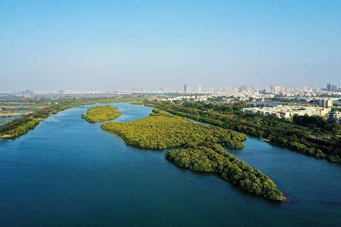 台南浪漫藝文之旅!永樂藝術聚落、漫步鹽水溪河畔,體驗台南慢活氣息