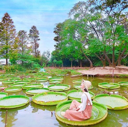 桃園,旅遊,國內旅遊,桃園景點,桃園美食,桃園必去