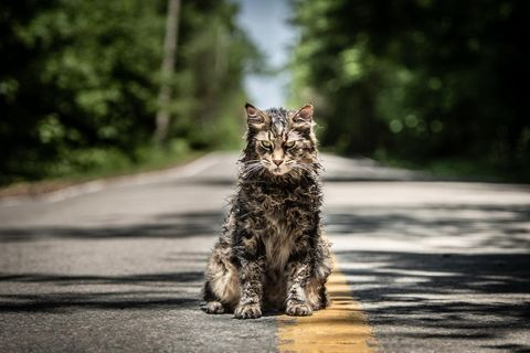 highest grossing horror movie remakes pet sematary