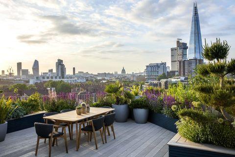 Expert advice: making a modern garden