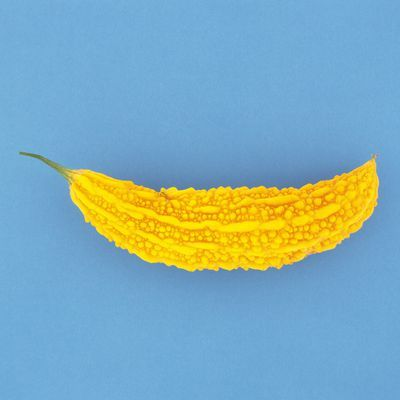 Yellow, Crochet, Orange, Textile, Plant, Fashion accessory, Thread, Knitting, Art,
