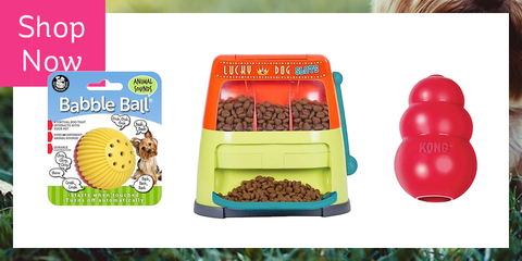 Dog Treat Dispenser >> 15 Best Interactive Dog Toys Interactive Treat Dispensing And