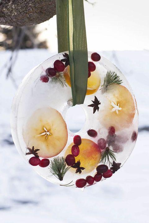 Christmas Wreaths Winter Ice Wreath