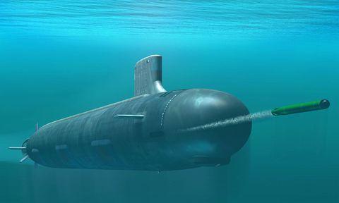 Submarine, Fish, Underwater, Organism, Ballistic missile submarine, Marine biology, Submersible, Vehicle, Marine mammal, Ocean,