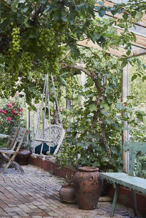 small garden ideas