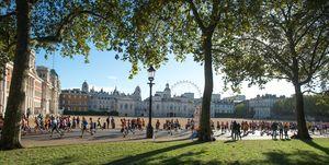 royal parks plastic-free
