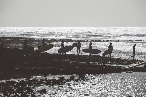 Water, Bird, Black-and-white, Sea, Seabird, Beach, Ocean, Photography, Monochrome photography, Coast,