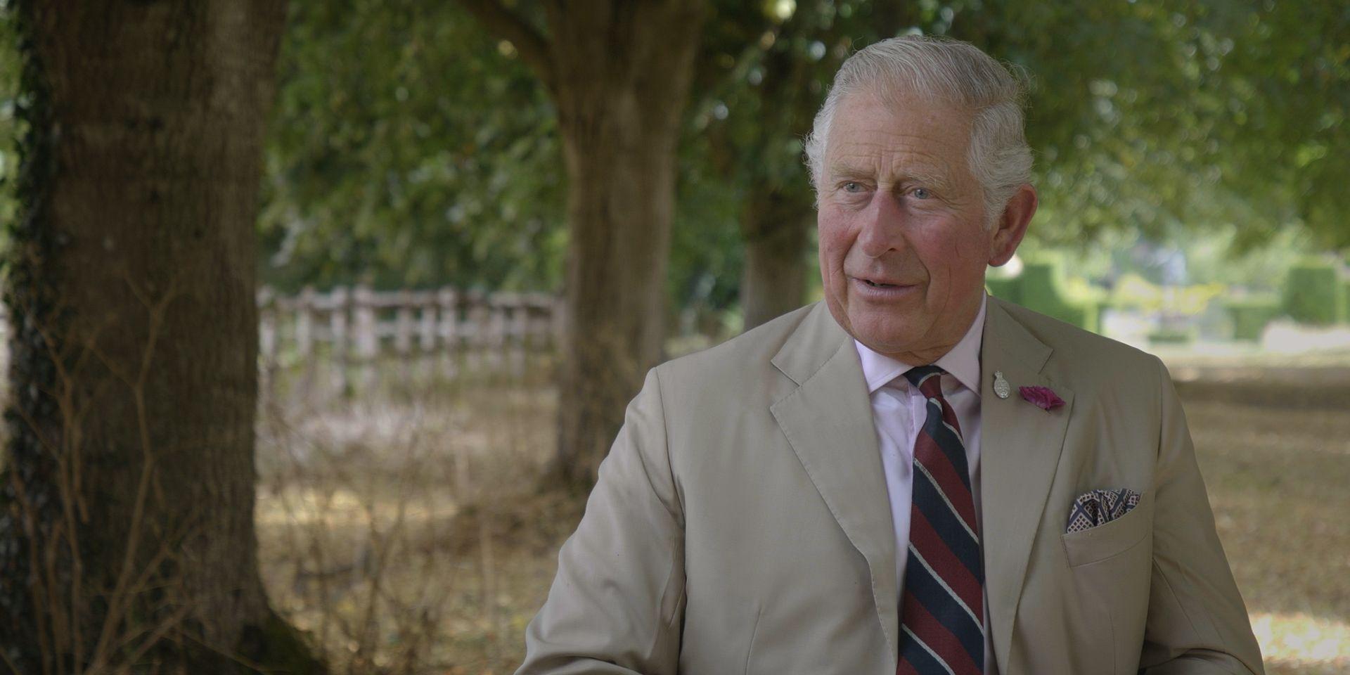 Prince Charles BBC documentary