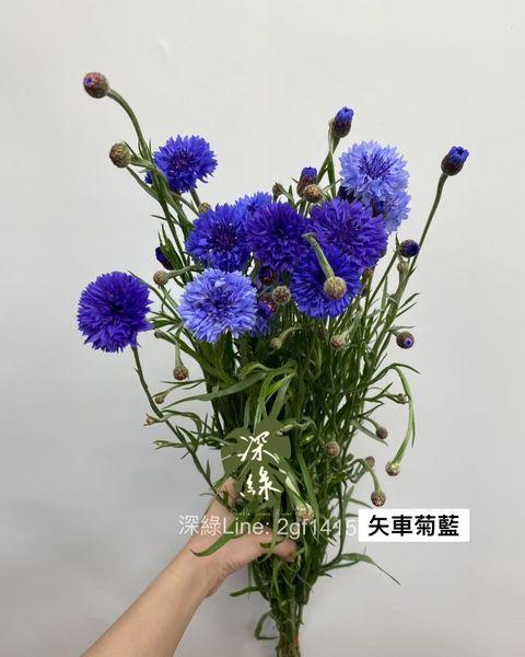 宅配花,花藝,插花,花藝師,花藝課,防疫花材,花材,鮮花,乾燥花,永生花