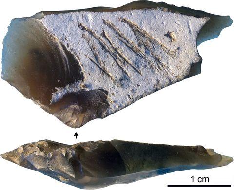 neanderthal stone