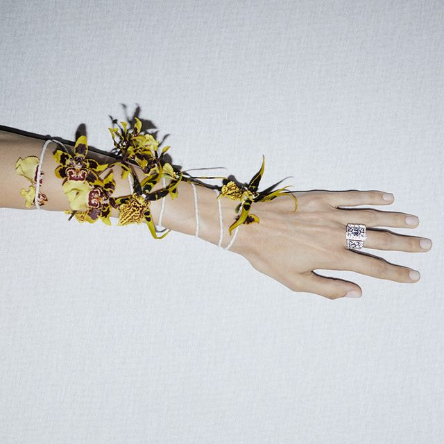 White, Yellow, Hand, Skin, Finger, Arm, Nail, Fashion accessory, Gesture, Photography,