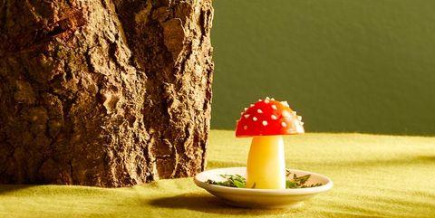 Mushroom, Sweetness, Still life, Food, Fungus, Plant, Fruit, Photography, Table, Still life photography,
